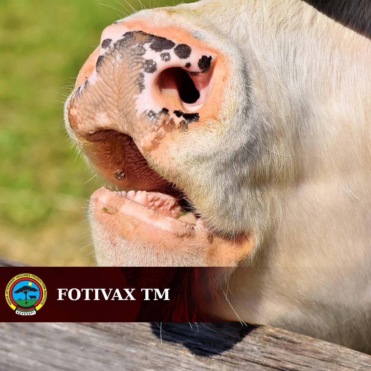 FOTIVAX TM